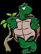 Next Ninja Turtles Movie to Feature OlderTurtles
